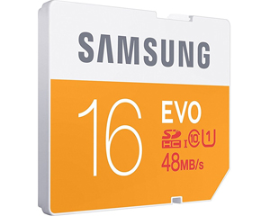 Samsung 16GB EVO Class 10 SDHC (MB-SP16D/AM)